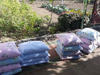 Чистка подушки по всей Молдавии звоните в любое время все размеры есть