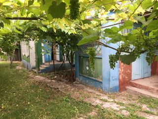 Casa in satul Berezlogi