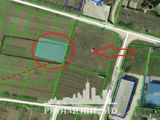 Vînzare teren destinat pentru construcții, Ciorescu, ofertă avantajoasă!