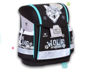 Школьные рюкзаки. Доставка по Кишиневу бесплатная.
