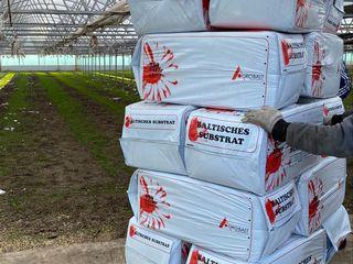 Substrat 250 литров , torf , turba. Pentru flori, rasad de legume .