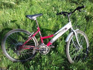 Спортивный велосипед Cunico в хорошем состоянии