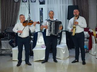 Formația BIS - maeștri muzicii de petrecere!
