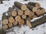 lemne pentru foc