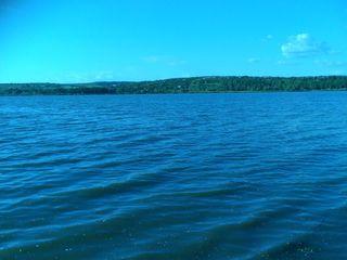 Дачный участок. Данчены. Озеро. (газ,вода,электричество).4900 евро!!!