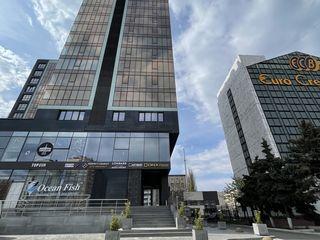 Oficiu in chirie in centrul orasului 590€! ismail 31