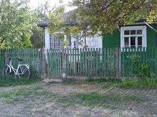 Se vide casa in orasul Donduseni