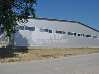 Depozit, 1440 mp, str. Sadoveanu, Ciocana, 4320 € !