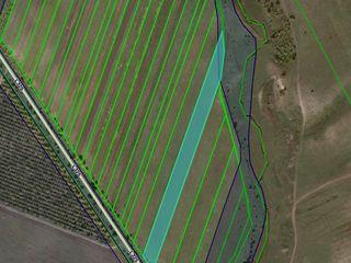 Vând teren agricol, cu suprafața de 86 ari, în raionul Orhei