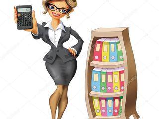Contabil sef - Servicii de contabilitate la distanță in diferite domenii