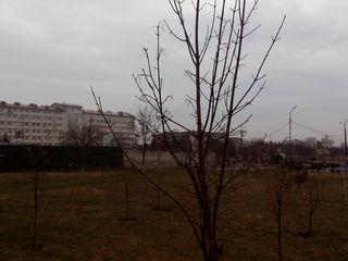 Teren in centru Ialoveni. Posibil pentru bloc. Участок в центре Яловень,можно под многоэтажку