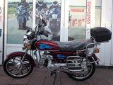 Viper Alpha 49/110cc