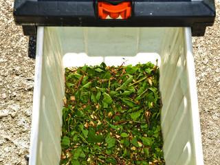 Tocator de crengi si resturi vegetale / измельчитель веток
