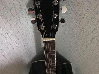 Vand chitara Electro-Acustica