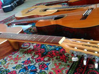 Обучение . гитара классичесская