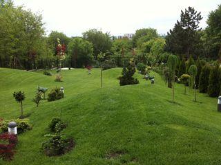 Продается дом в центре с видом на парк