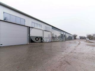 Arenda / vinzare a imobilului comercial (de la 90 m2 pina la 7000m2), traseu, prima linie