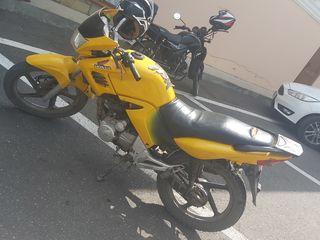 Orox Gt 200