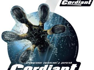 Летние шины Cordiant  coleso.md