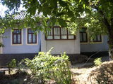 casa in stare buna, locuibila, beci, apa in ograda, 16 sote de pamint,pe ele vie , copaci fructiferi