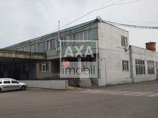 Vânzare spațiu comercial în zona economică liberă Ungheni
