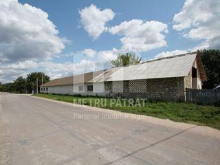 M2-Vânzare, Spațiu comercial, 800/mp. sat. Pîrîta, Preț-89900