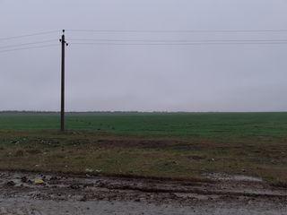Продам земли сельхозназначения пашня 16,3га консолидированные