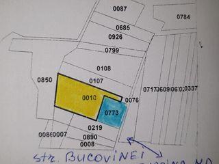 Vinzare a doua loturi de pamint in regiunea str. Bucovina