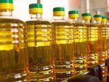 Продажа масла подсолнечного рафинированного и не рафинированого