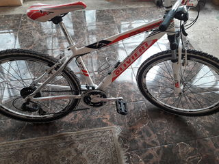 bike oliviere