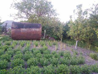 Cisterna 30 T   цистерна 30 Т