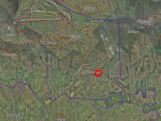 teren agricol singera, chișinău, dobrogea