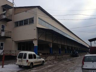 Помещения под склады -от 2€/кв.и офисы -от 5€/кв.м.Petricani