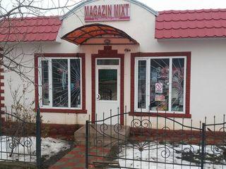 Se vinde magazin in s. Pelinia (centru)