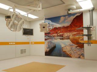 Медицинская дверь, модульная панельная система операционных,мебель и оборудование для медицинских уч