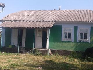 Se vinde casa în grinaut.