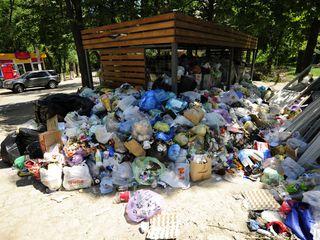 Вывоз строительного и бытового мусора!!!