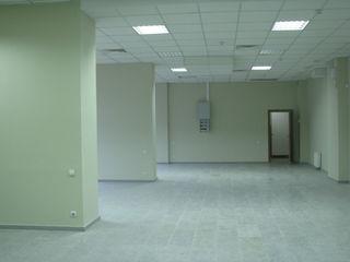 Сдаем торговое помещение 120м2 + 260м2 под бизнес! на Московском пр-те!