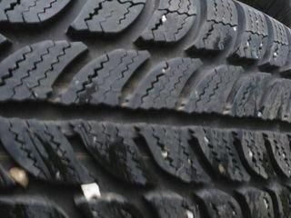 зимние шины Debica, Sava R15