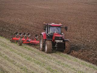 Iau în arendă pământ arabil