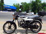 Viper RX 49cc noi