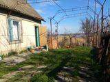 Дача на берегу Днестровского лимана
