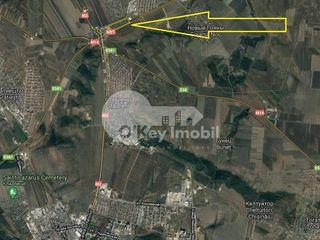 Teren cu destinație agricolă/construcții, 950 ari, Cricova!