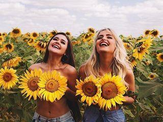 Floarea soarelui  vind 50 tone