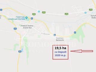 Teren Vânzare, 30 km de la Chișinău! 19,50 ha, or. A. Noi