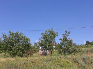 Срочно!!!argent продаётся хороший земельный участок.
