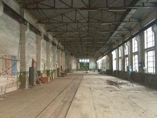 Производственные цеха и 4,5 га земли.