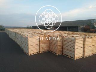 Контейнер для яблок 800х1000х1200 мм (габариты контейнера могут быть изменены по желанию заказчика).