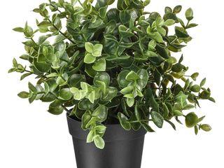 Ikea fejka planta artificiala - oregano