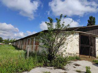Продается складское помещение 1582 кв.м. территория 36 соток с. Нихорень окраина Рышкан. Цена 20000